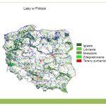 Świat roślinny i zwierzęcy w Polsce